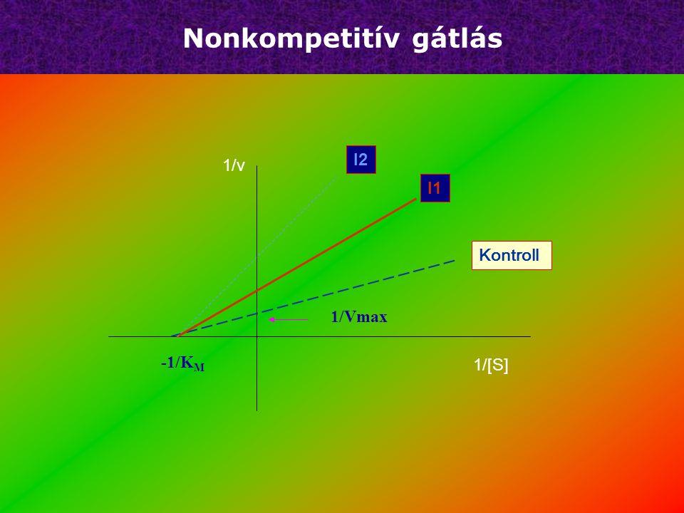 Nonkompetitív gátlás I2 1/v I1 Kontroll 1/Vmax -1/KM 1/[S]